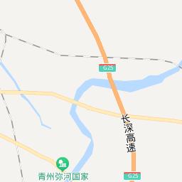 菊花苗 盆栽菊花 茗茜菊花种植基地 价格 厂家 中国供应商